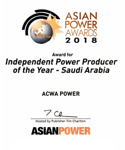 Independent Power Producer of the Year